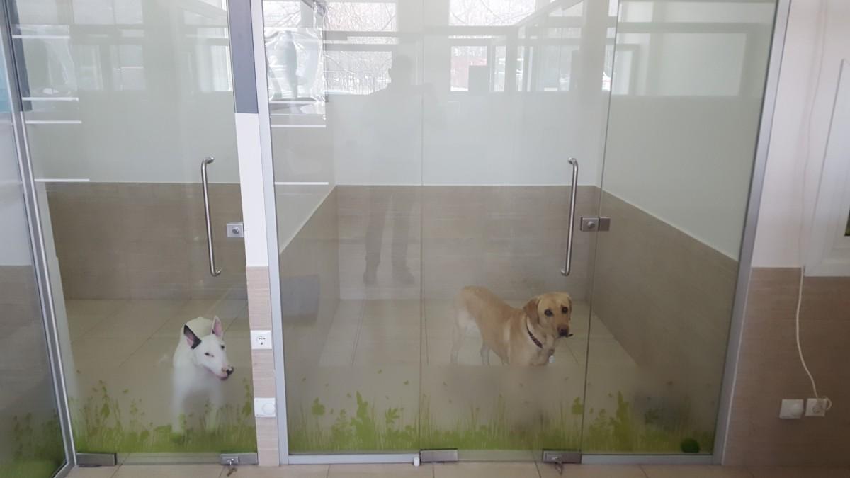 Гостиница для собак Надодог
